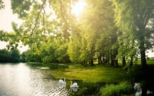 清秀怡人自然风景桌面壁纸